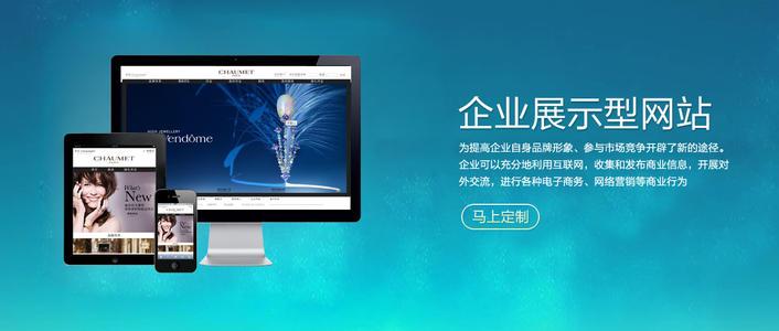 企业官网网站